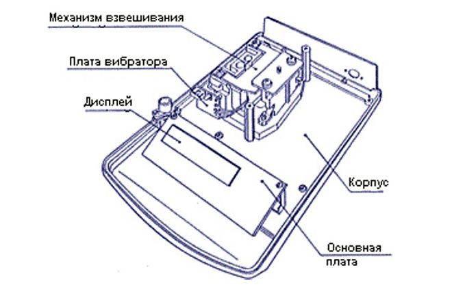 Схема устройства весов